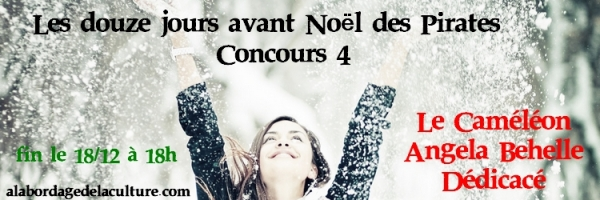modele-concours-4